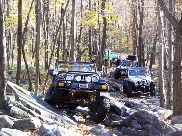Group four-wheeling in the woods...Jeep photos provided by Al Handy!