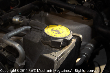 Check power steering fluid